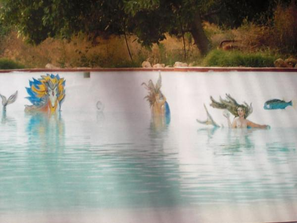 Como pintar una piscina o alberca piscinas y albercas for Como construir una pileta de agua