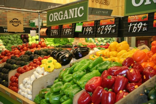 Organic Food Store Business Plan