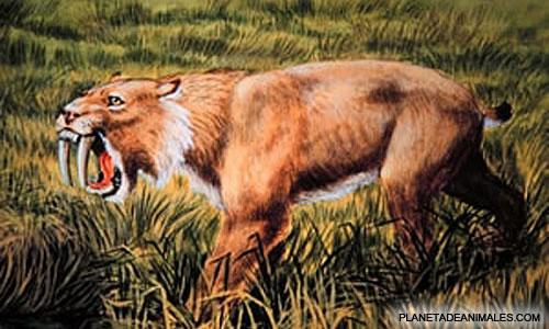 animales extinguidosgarcias