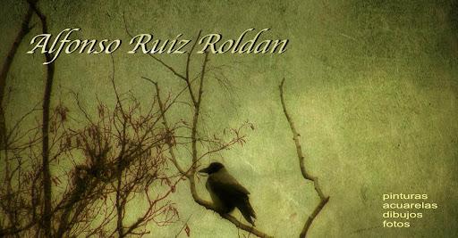 www.alfonsoruizroldan.blogspot.com