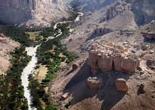 Bukit Hadramout Yaman Madu SIDR