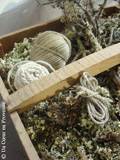 Clayette remplie de lichen