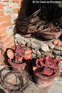 Old Ampholia pots