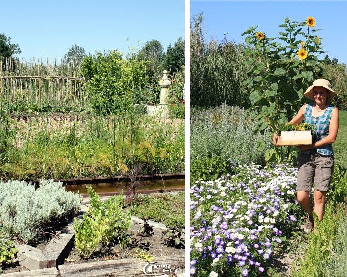 Jardin potager de La Chassagnette
