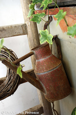 Vieil arrosoir accroché dans mon atelier de verdure