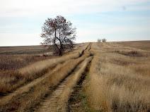 Prairie Polis
