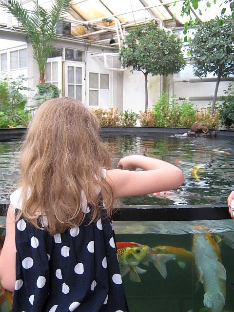 young girl putting her finger into a large aquarium