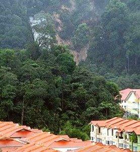 اطراف کوالالامپور پر از تپه های سرسبز و زیباست