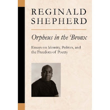 "<a href=""http://www.press.umich.edu/titleDetailDesc.do?id=297174"">Orpheus in the Bronx</a>"