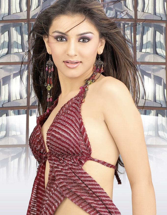 TwinkleDreams: Bollywood Hot Actress Hansika Motwani Hot Videos from ...