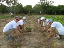CAMBODIA: Planting the Seeds