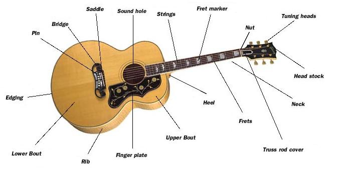 guitarmake: More Anatomy and Construction Overview