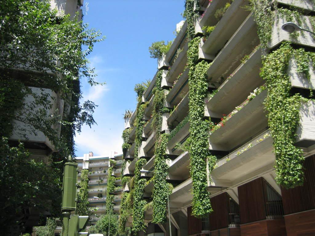 Paisaje Bitacora Proponen Crear Jardines En Las Terrazas
