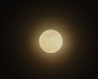 moon rise time