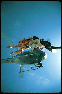 hire skydivers tampa fl