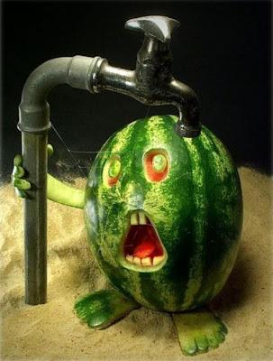 Funny photo ,food funny photo