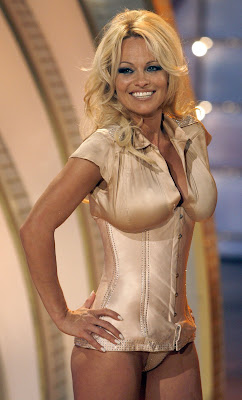 Pamela Anderson $1.2 Million Debt
