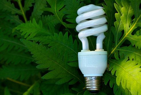 My World Of Design Utopian Cfl Light Bulbs