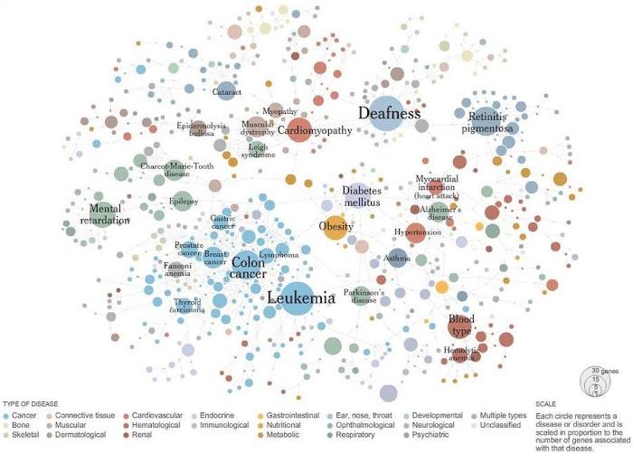 Disease Network