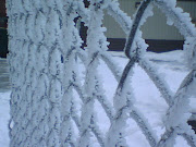 Frost from fog on fence