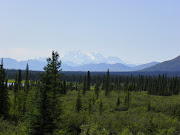 Denali from the north