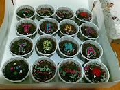 Cup cake coklat moist - set 16pcs