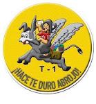 Distintivo del Grupo I de Transporte ( para buzo de tripulaciones, años 60)