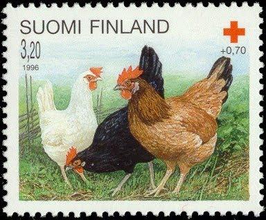 Kotimaisessa postimerkissä valkoinen munijarotu leghorn ja maatiaiskanoja.