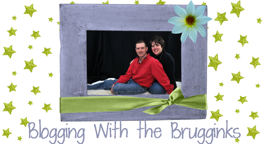 Blogging with the Brugginks