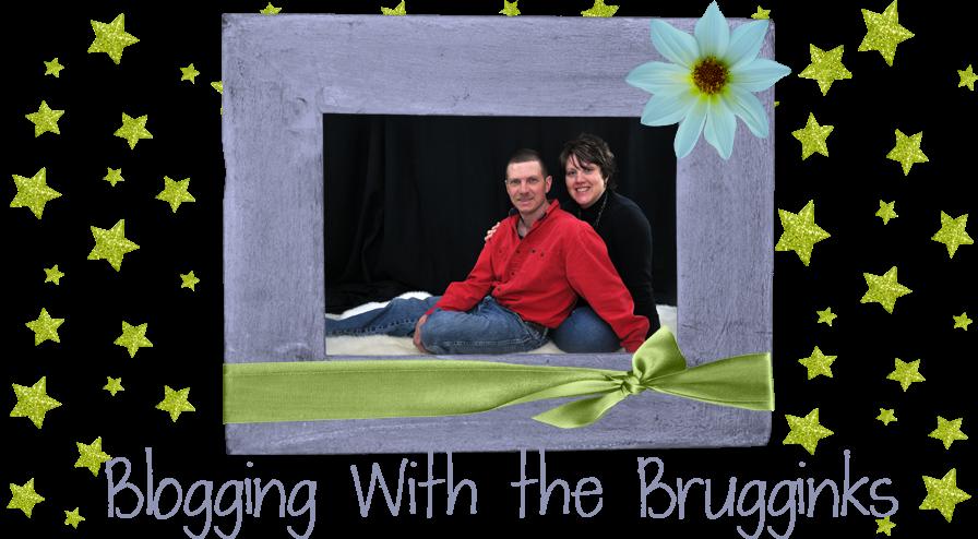 Blogging with the Brugginks