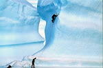 Adventure Vacations in the Arctic