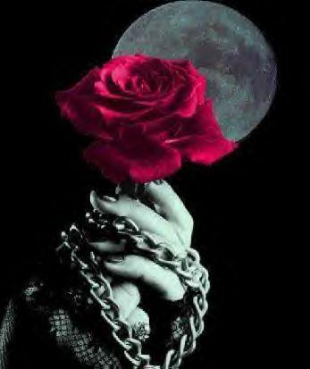 Cruces y Rosas Góticas El Refugio de la poesia gotica - Imagenes Goticas De Rosas