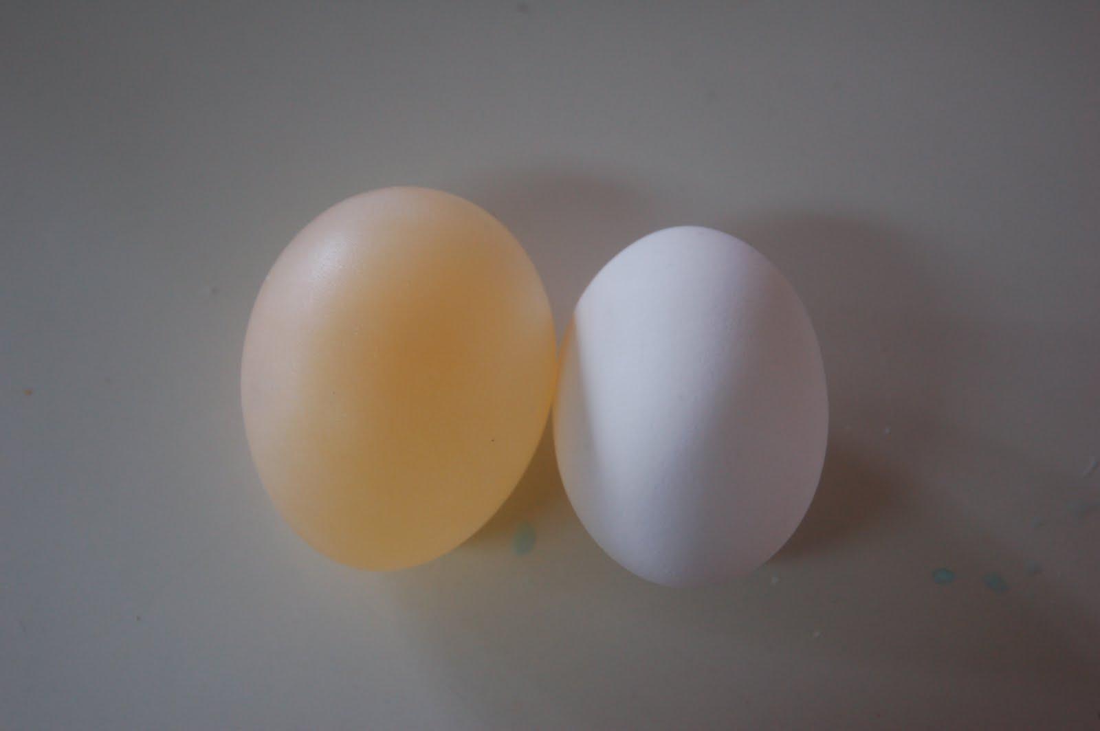 how to make vinegar eggs