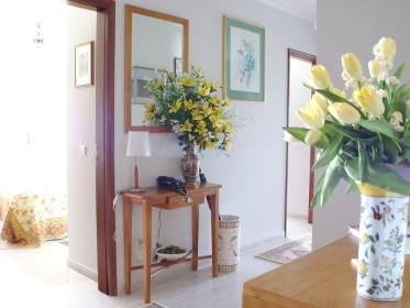 Feng shui em toda a casa decora o e ideias for Feng shui plantas entrada casa