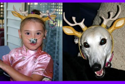 Reindeers December 2007