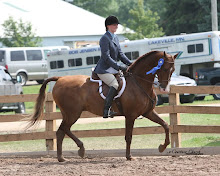 First Saddlebred Show