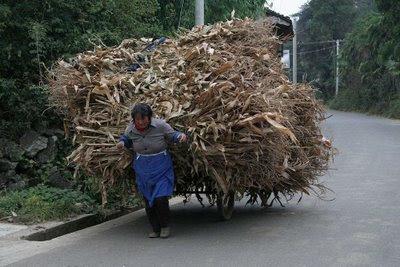 Crise econômica silenciada na China. Yunnan