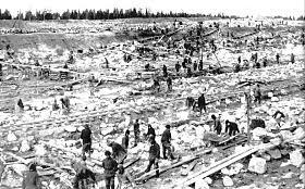 O Grande Expurgo: 6 milhões de vítimas