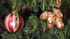 O pinheiro de Natal na Alemanha