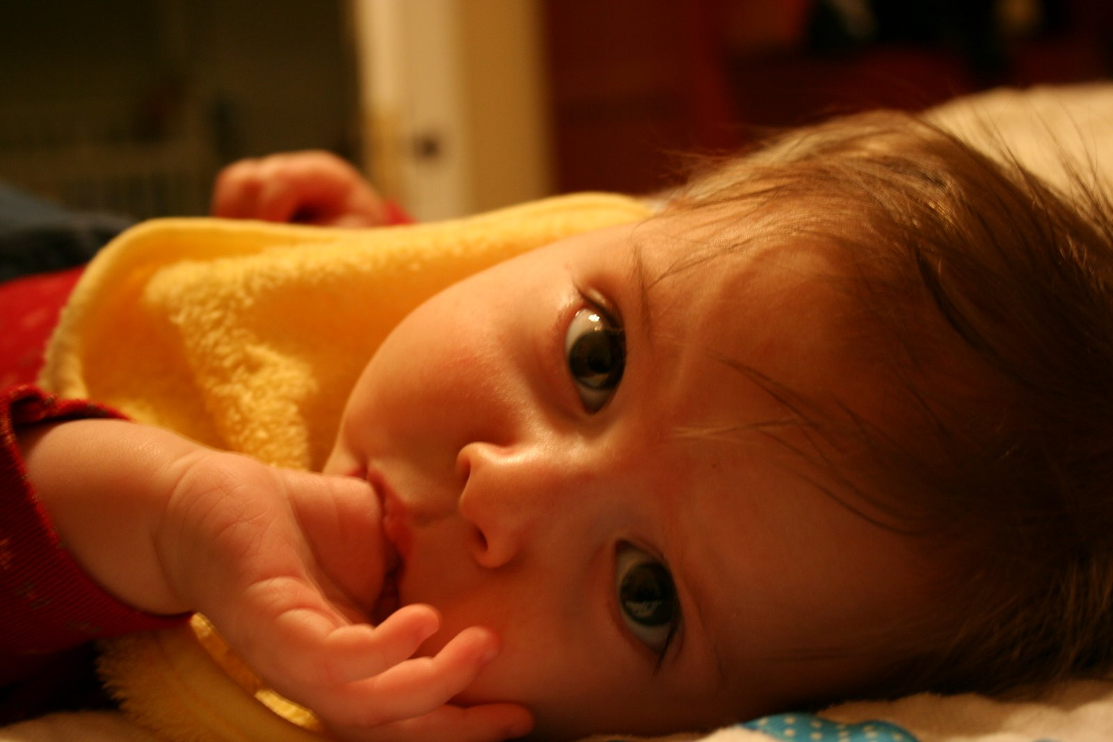 Little Girl with Brown Hair Blue Eyes Picture