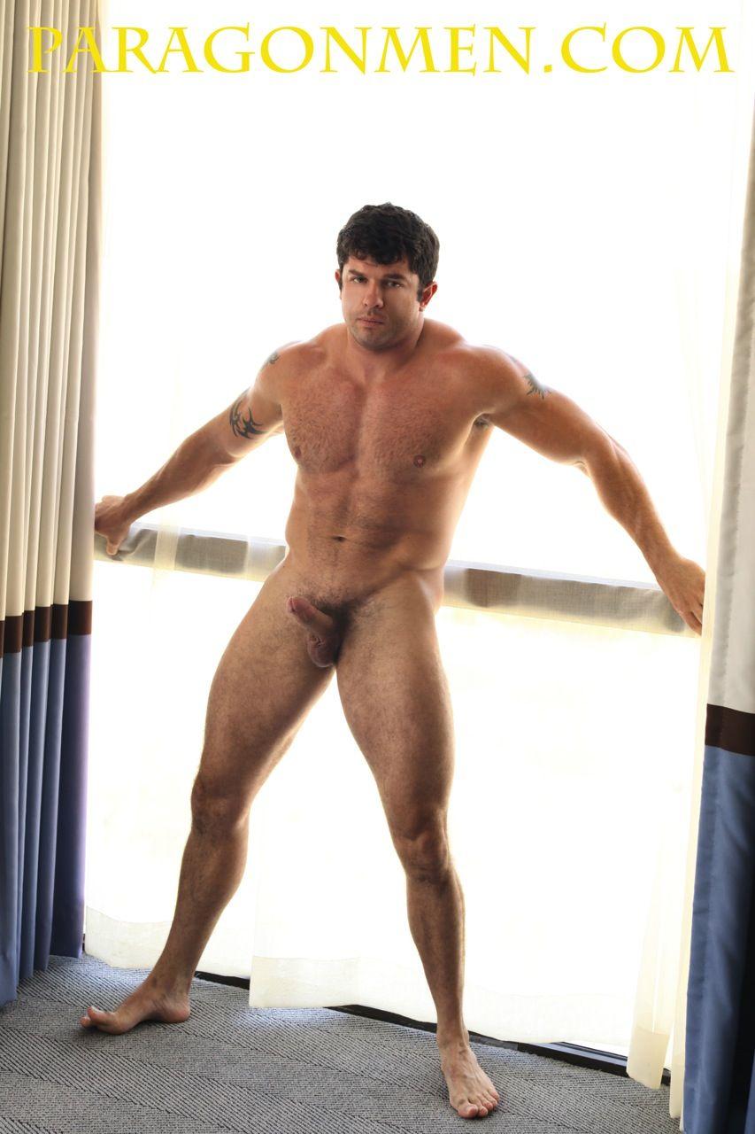 gay muscle hunks galleries