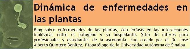 Dinámica de enfermedades en las plantas
