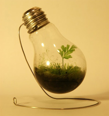 Creative Light Bulb Plant Pot