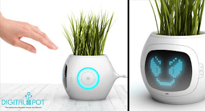 beautiful Digital Plant Pot