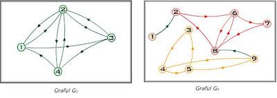 graf tare conex