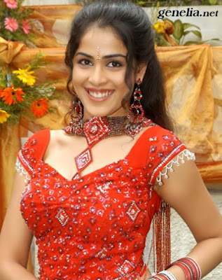 genelia/bollywood/wallpapers/hot/online/collections/hair style/top actress/gallery/