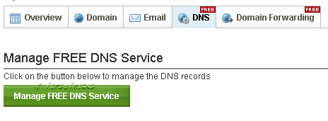 DNS Settings in Domain Control Panel
