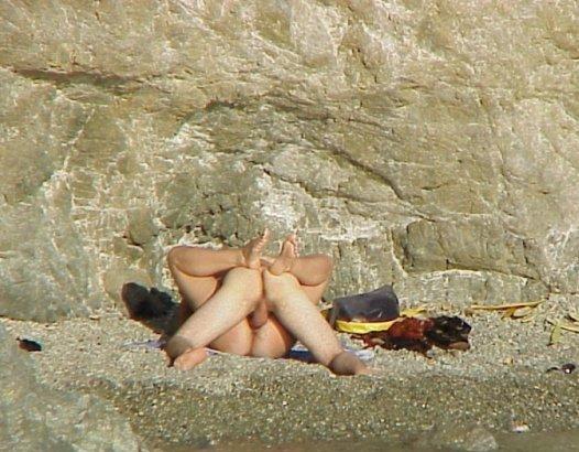 Cat desnudos sol y arena