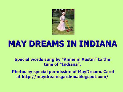 Annieinaustin, May Dreams song, title