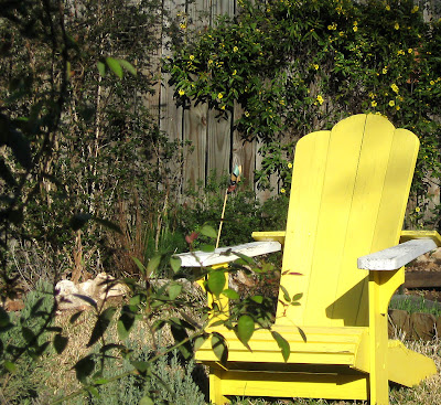 Yellow chair and jessamine,Annieinaustin
